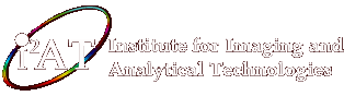 Mississippi State University - Institute for Imaging & Analytical Technologies